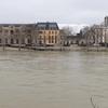 セーヌ川の水位が上がり、歩道・樹木が完全に浸かってしまった