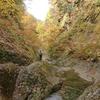 山形市 秋の面白山紅葉川渓谷ををご紹介!🍁