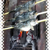 夏休み、手軽に時間無制限の300円釣り堀。そして縄文鍾乳洞。
