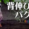 0922【アレチウリがカルガモに食べられる】亀が3種類アカミミクサガメスッポン、スズメの水浴び、カワセミ飛び込み、チョウゲンボウ飛翔など【今日撮り野鳥動画まとめ】 #身近な生き物語