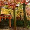 雨の中のフォトウォーク with ちゅうさん!見頃の紅葉を福岡で堪能できた件