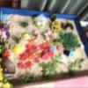 ブログ更新しました 箱庭心理セラピストの箱庭療法①   http://www.olive-jp.co