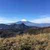 箱根の山 (明神ヶ岳〜明星ヶ岳)