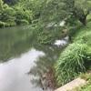 『東沢下池』静岡県掛川野池群バス釣り完全攻略マップ