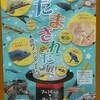 【夏休み・ファミリー向け】さいたま水族館の特別展『だまされた展』紹介!小学校の自由研究にもオススメ!