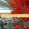 羽田空港観察記 ~Oct. 2018 (Autumn)~