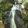 岐阜県 宇津江四十八滝 森林浴とマイナスイオン