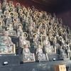 何気なく訪れた彦根のお寺が圧巻だった話
