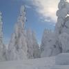 【長野】別所温泉+菅平高原で温泉とスキー、スノボを両方楽しむ