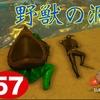 #57 野獣の洞窟はカエル安定ですな。