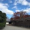 京都へ行ってきました! 世界文化遺産 醍醐寺 三宝院編