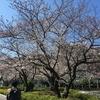 横須賀&鎌倉に行ってきたよ。 その2