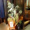 ならまち七夕まつり:笹飾りさまざま&プチ企画