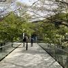 青い空と箱根日帰り弾丸ツアー「風の遊ぶ散歩道」