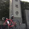 勝尾寺TT36回目、もうそろそろタイム更新したいところなんだけど・・【ロードバイク】