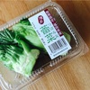 【未知の食材チャレンジ】蕾菜