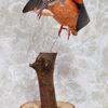 ペーパークラフト カワセミの飛翔