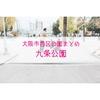 【公園情報】九条公園(最寄りドーム前):大阪市西区公園まとめ