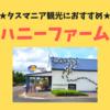 【タスマニア】ぜひ行ってほしい!美味しいハニーアイスが食べられるハニーファームの紹介。