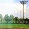 球春到来☆プロ野球キャンプイン!そもそも春季キャンプはいつが始まり?