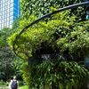 緑の塔(三菱一号館庭園)
