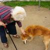 ロッキーとおばあちゃん