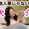 愛犬の介護