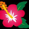 【宮古島(沖縄)旅行記】その1 久々の国内線!飛行機寒すぎる…(9月)
