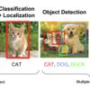 DeepLearningによる画像解析