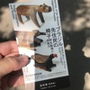 Tokyo Day 1:「ブラジル先住民の椅子」展観覧@東京都庭園美術館