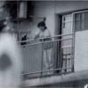 秋篠宮家キコ妃の横暴と浪費をいつまで許すのか?日本にはトランプはいないの?