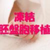 胚盤胞移植と着床サポート鍼