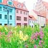 花を愛するラトビア人