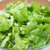 食物繊維はどんな食品で取るのがベストなのか?という観察研究のお話です