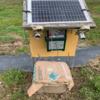 畑の電気柵の復活の準備