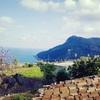 自然豊かなマヨルカ島でハイキングしてきました。スペイン旅行のついでにもオススメです!