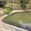 『北ノ谷池』静岡県掛川野池群バス釣り完全攻略マップ