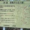 山梨県 御庵沢小武川線林道の絶景を!