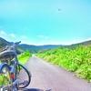 地方創生とインバウンド誘致に自転車を活用する「ナショナルサイクルルート制度」国交省が創設
