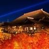 京都市が世界の持続可能な観光地「TOP100選」に選出❗️