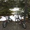 京都へ。自転車で修学院離宮からの京都めぐり