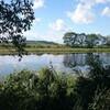 十勝川での自然保全・再生