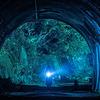 映画「犬鳴村」のあらすじ・感想レビュー:実在する心霊スポットと都市伝説を映画化!