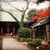 平成最後の天皇御誕生日につき、皇居方面へ出かけてみた。