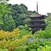 日本で3つの美しい五重塔に数えられる 瑠璃光寺 五重塔 山口県山口市