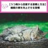 【うつ病から回復する習慣と方法】睡眠の質を向上させる習慣