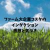 【ファームジョブ】コスタ初出勤!インダクションとトレーニング。