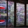 旧竹林院で座卓に映り込む紅葉撮影