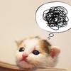 感情の絡まりを解く「無意識エンジン発見セッション」とは?