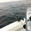 釣り人生。満5年